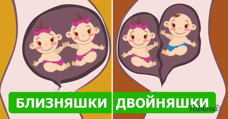 Разница между двойняшками и близняшками
